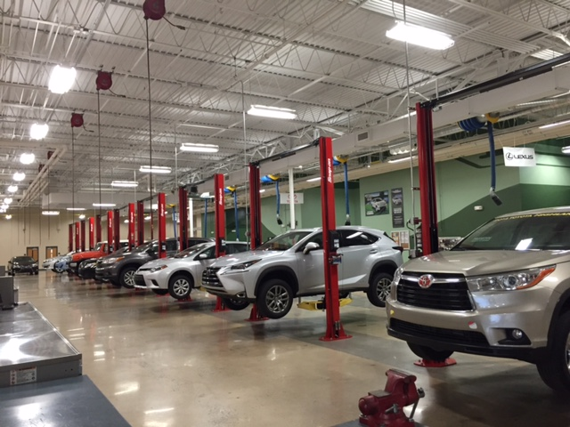 Cars lifted up and ready to be worked on