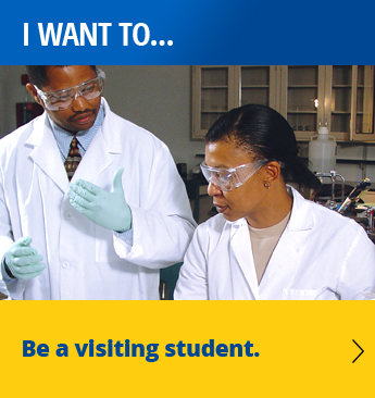 I want to be a visiting student