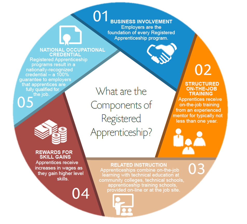 Apprenticeship info graphic, linked to accessible version
